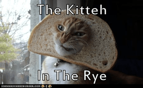 The Kitteh  In The Rye