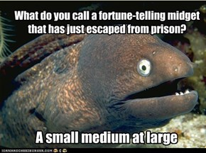 Bad Joke Eel:  Do you want to Super-Size that?
