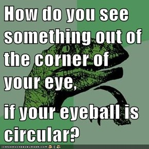 How do you see something out of the corner of your eye,  if your eyeball is circular?