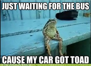 I Toad You that would happen!