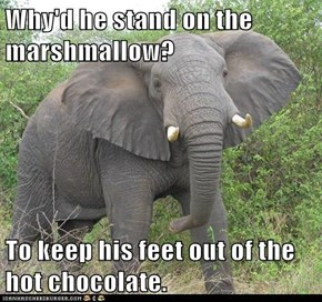 Why'd he stand on the marshmallow?  To keep his feet out of the hot chocolate.