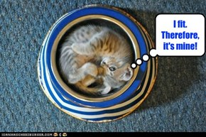 Kitty Logic