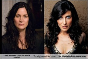 Carrie Ann Moss, (from the Matrix movies) Totally Looks Like Lisa Edelstein (from House MD)