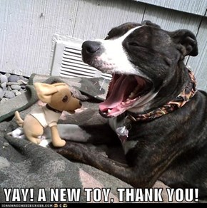 YAY! A NEW TOY, THANK YOU!