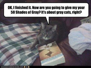 It's not about gray cats?