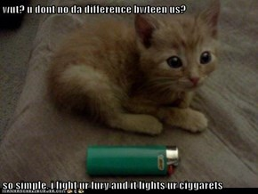 wut? u dont no da difference bwteen us?  so simple, i light ur fury and it lights ur ciggarets