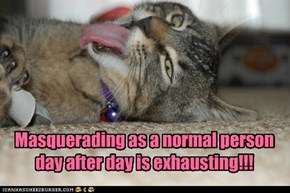 Masquerading as a normal person day after day is exhausting!!!