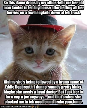 That's a likely story, Mr. Spayed.