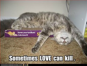 Sometimes  LOVE  can  kill .