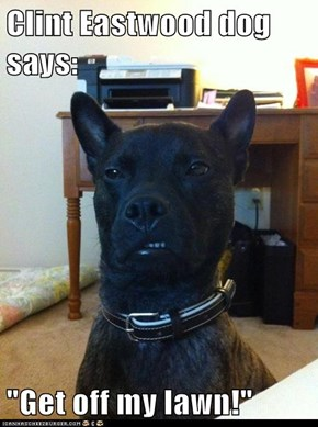 """Clint Eastwood dog says:  """"Get off my lawn!"""""""