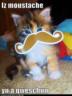 Iz moustache  yu a qweschun