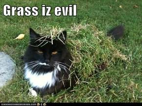 Grass iz evil