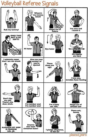 Volley Ball Referee Signals