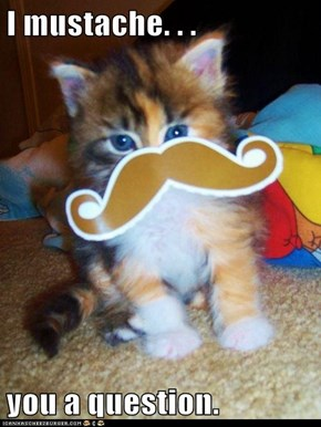 I mustache. . .  you a question.