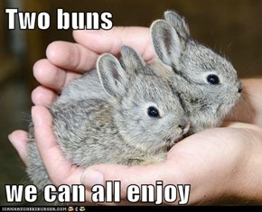 Two buns  we can all enjoy
