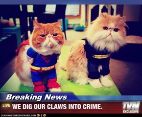Breaking News - WE DIG OUR CLAWS INTO CRIME.