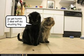 oh YUK! go get humin