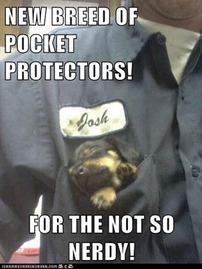 NEW BREED OF POCKET PROTECTORS!  FOR THE NOT SO NERDY!