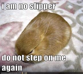 i am no slipper  do not step on me again