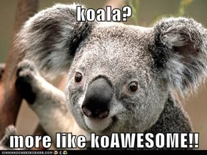 koala?  more like koAWESOME!!