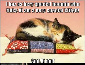 I haz as bery special hoomin who tinks Ai am a bery special kitteh!  And Ai am!