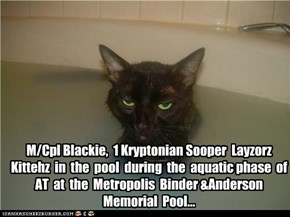 M/Cpl Blackie,  1 Kryptonian Sooper  Layzorz  Kittehz  in  the  pool  during  the  aquatic phase  of  AT  at  the  Metropolis  Binder &Anderson Memorial  Pool...