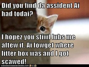 Did you find da assident Ai had todai?  I hopez you stiwl lubs me aftew it. Ai fowget where litter box was and I got scawed!