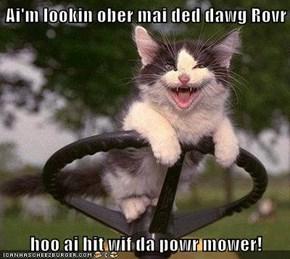 Ai'm lookin ober mai ded dawg Rovr  hoo ai hit wif da powr mower!