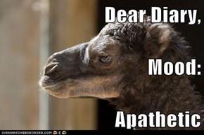Dear Diary, Mood: Apathetic
