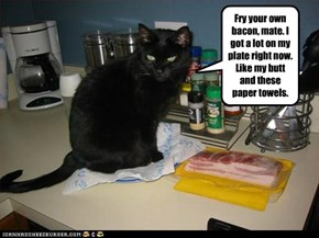 Basement Cat Ain't No Short Order Cook
