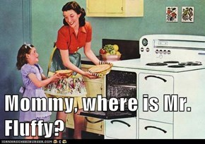 Mommy, where is Mr. Fluffy?
