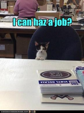 u hire me?