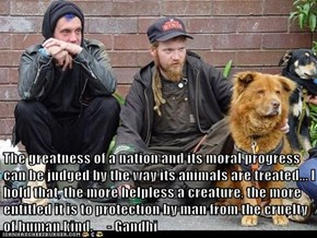 The greatness of a nation and its moral progress can be judged by the way its animals are treated... I hold that, the more helpless a creature, the more entitled it is to protection by man from the cruelty of human kind.     - Gandhi