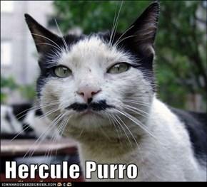 Hercule Purro