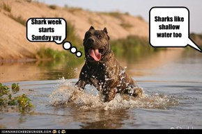 Shark week starts Sunday yay