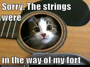 Sorry. The strings were   in the way of my fort