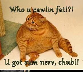 Who u cawlin fat!?!  U got sum nerv, chubi!