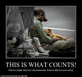 THIS IS WHAT COUNTS!