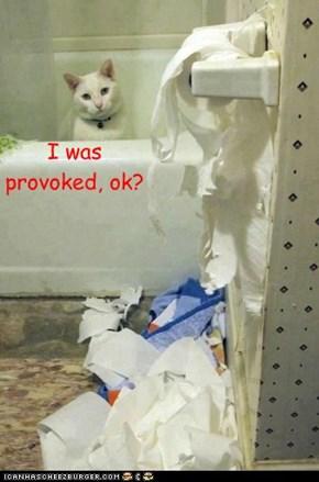 I was  provoked, ok?