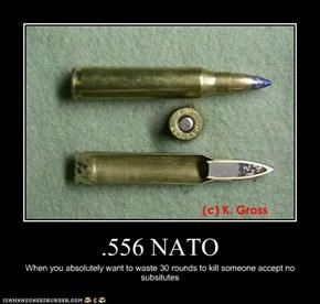 .556 NATO