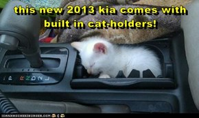 this new 2013 kia comes with built in cat-holders!