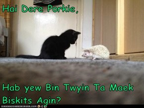 Hai Dere Porkie,  Hab yew Bin Twyin Ta Maek Biskits Agin?