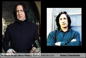 Professor Snape (Harry Potter) Totally Looks Like Jimmy Chamberlin