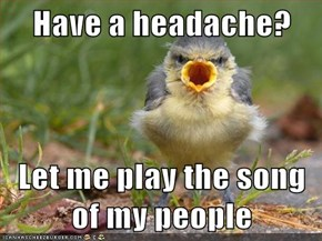 Have a headache?  Let me play the song of my people