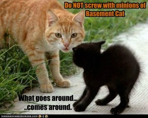 Do NOT screw with minions of Basement Cat