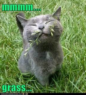 mmmm....  grass...