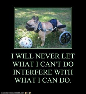 I WILL NEVER LET WHAT I CAN'T DO INTERFERE WITH WHAT I CAN DO.