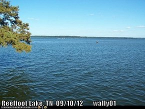 Reelfoot Lake, TN  09/10/12       wally01