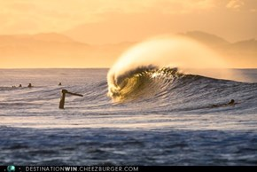 In The Crest of a Wave Off the Coast of Byron Bay, Australia