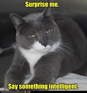 Surprise me.